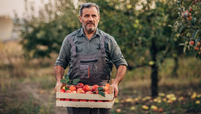 Farmers' win consumers' trust, an EIT Food report reveals